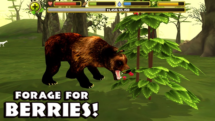 Wildlife Simulator: Bear screenshot-4