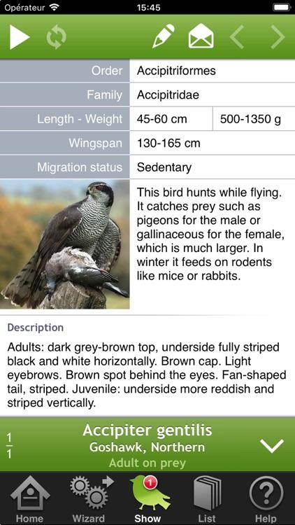 Birds of Britain and Europe screenshot-3