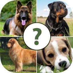 Pups Pet Trivia Pro