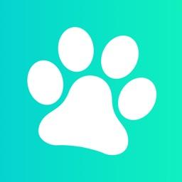 Paws Dog Training & Tricks