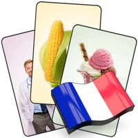 Codes for French Flashcard for Learning Hack