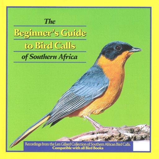 Beginner's Guide to Bird Calls of Southern Africa
