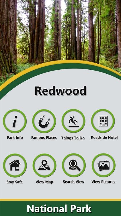 Redwood In- National Park