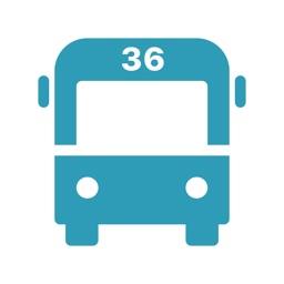 Bus-36