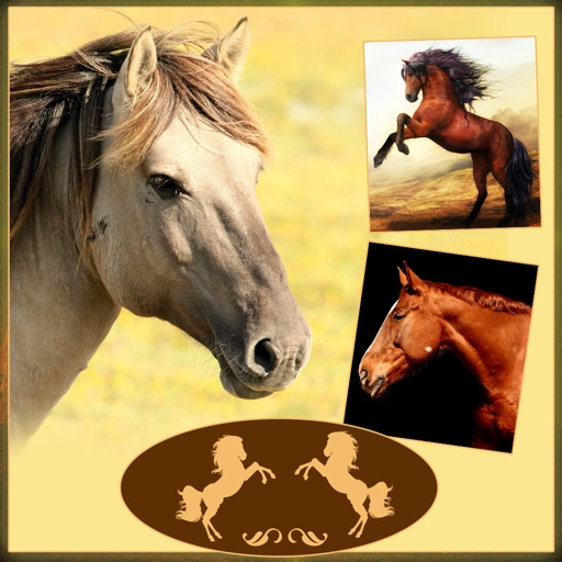 Horses - Wallpapers + Add Text