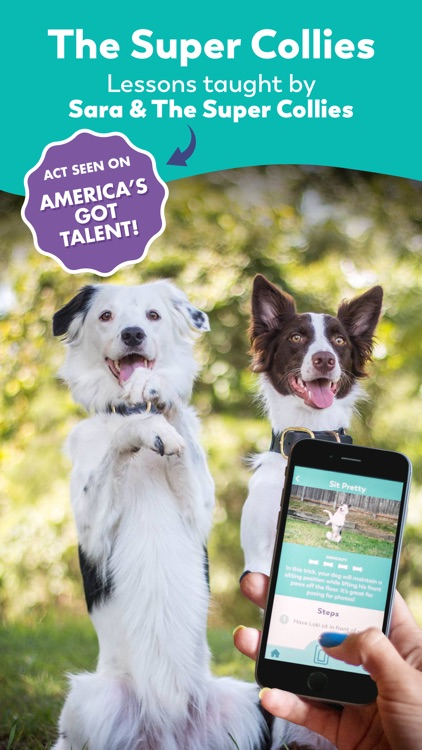 Puppr - Dog Training & Tricks screenshot-9