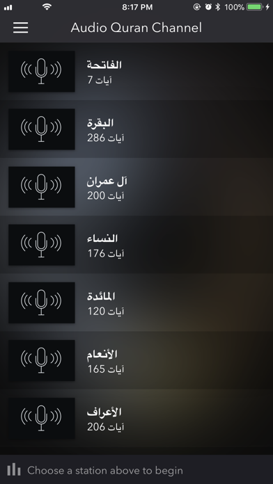 Audio Quran Channel screenshot three