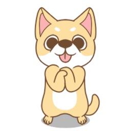 Shiba Cute Dog Stickers