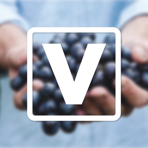 New Life Vineyard icon