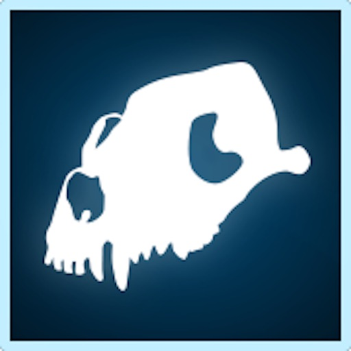 Bone Viewer: Dog Skull