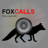 REAL Fox Sounds and Fox Calls for Fox Hunting - BLUETOOTH COMPATIBLE