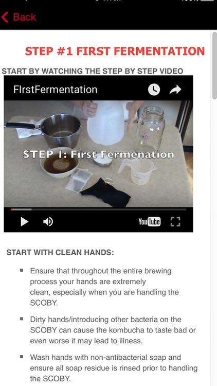 KOMBUCHA Made Easy! How to Make Kombucha Tea - Your First Home Brew With Probiotics