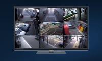 XVR Spot Monitor