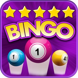 Top Bingo Pro - Bash & Fun