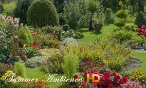Summer Ambience HD