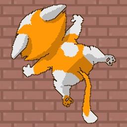 Jumping Cat - fun fun fun