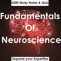 Fundamentals Of Neuroscience : 2200 Study Notes & Quizzes