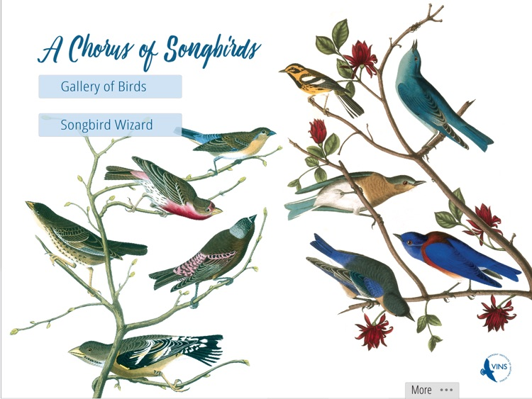 A Chorus of Songbirds