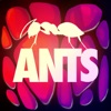ANTS - THE GAME - iPadアプリ