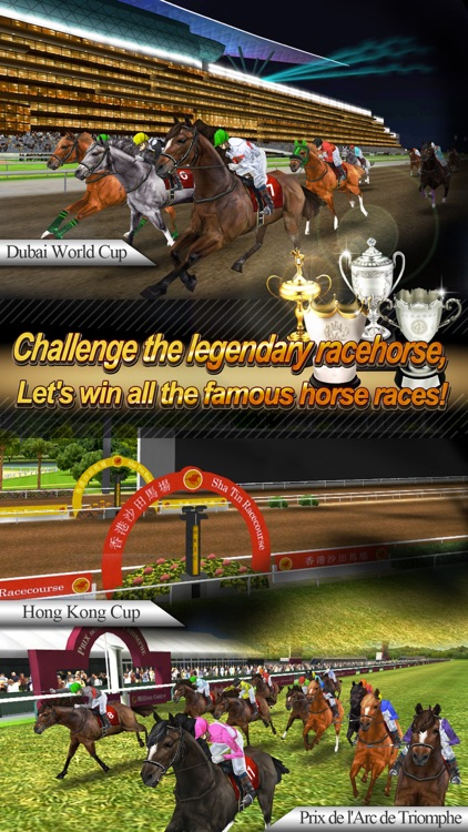 Real Horse Racing (3D)