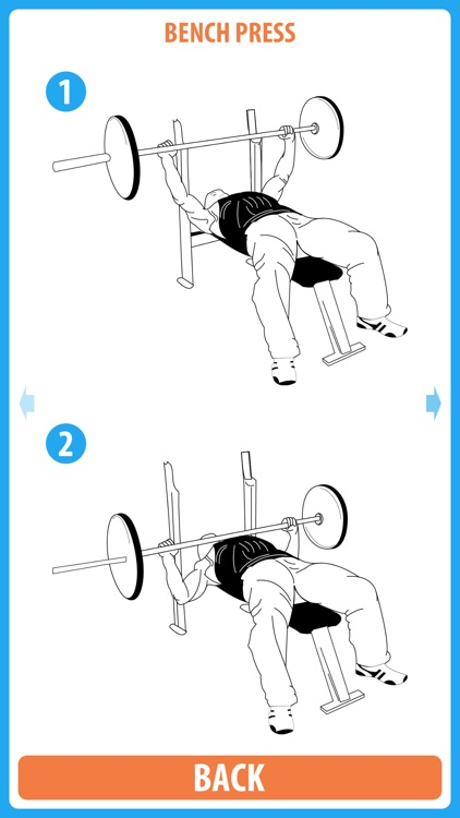 Bro Split Bodybuilding - Use this classic bro split routine to make the muscle gains that you have been looking for screenshot-4