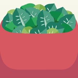 Salad Shake