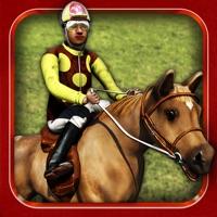 Codes for Amazing Horse Race Free - Quarter Horse Racing Simulator Game Hack