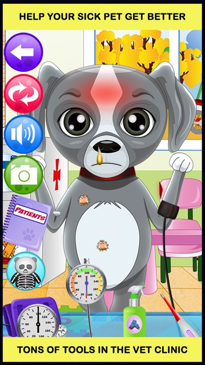 Pet Vet Doctor Salon Games