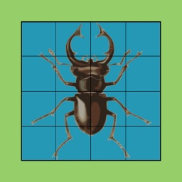 BeetleZap! Puzzles 2