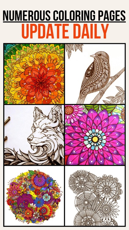 Colorfit - Adult Coloring Book - Secret Garden