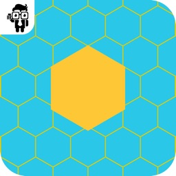 Fit The Hexagon