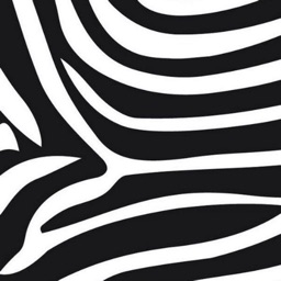 Zebra Print Wallpapers
