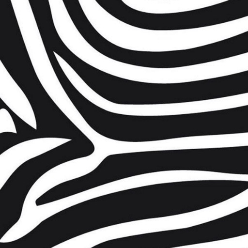 Zebra Print Wallpapers icon