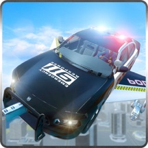 Police Flying Car Chase