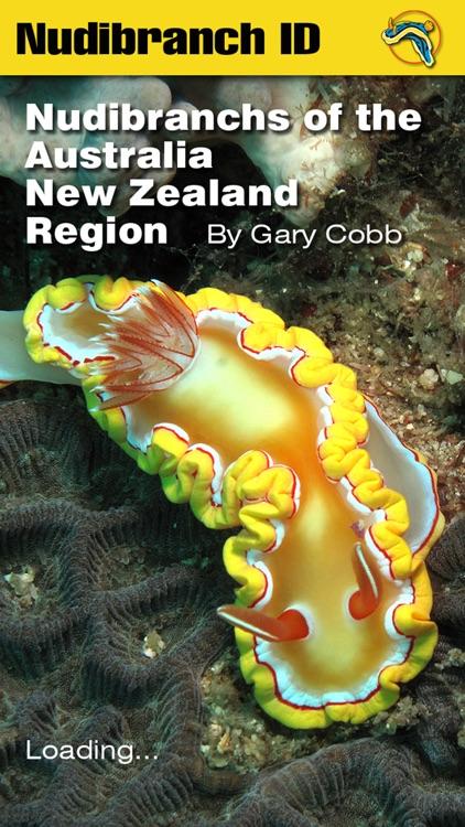 Nudibranch ID Australia NZ