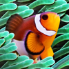 Colorful Aquarium for iPad