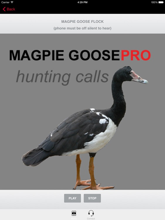 REAL Magpie Goose Calls - Hunting Calls for Magpie Geese -- (ad free) BLUETOOTH COMPATIBLE screenshot-0