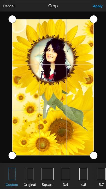 Sunflower Photo Frame screenshot-3