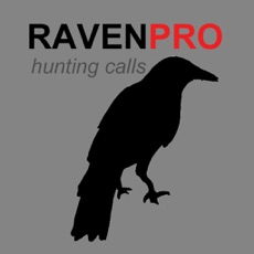 Activities of REAL Raven Hunting Calls - 7 REAL Raven CALLS & Raven Sounds! - Raven e-Caller & BLUETOOTH COMPATIBL...