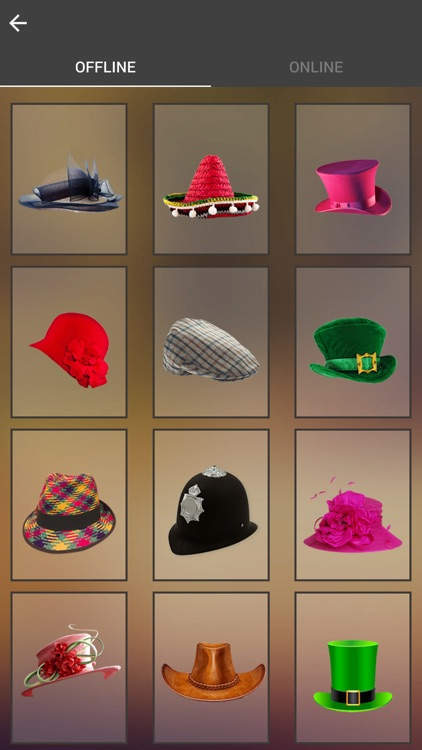 Hats Photo Montage screenshot-2