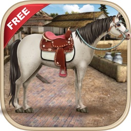 Horse Care Time Game