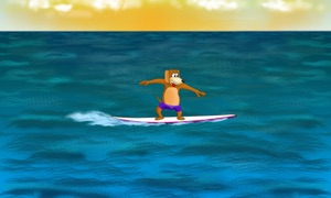 Danger Dog Surf TV