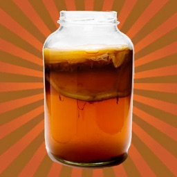 KOMBUCHA Made Easy! How to Make Kombucha Tea - Your First Home Brew With Probiotics