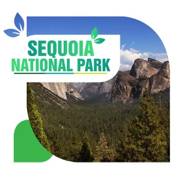 Sequoia National Park Travel Guide