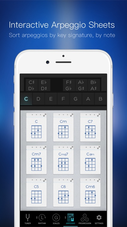 Bass Toolkit - Tuner, Metronome and Chord Progresssions screenshot-4