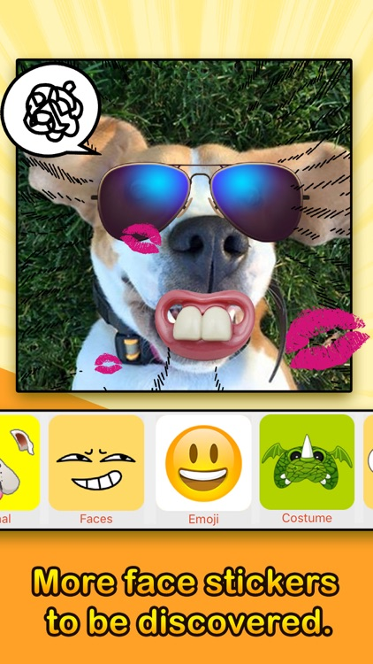 Face Filters - Dog & Other Funny Face Effects screenshot-3