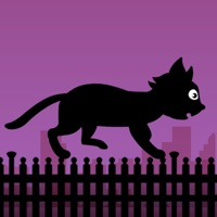 Codes for Black Cat Run Hack