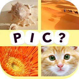 Guess the Word - new quiz with pics and word