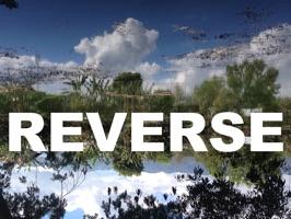 REVERSE LANDSCAPE