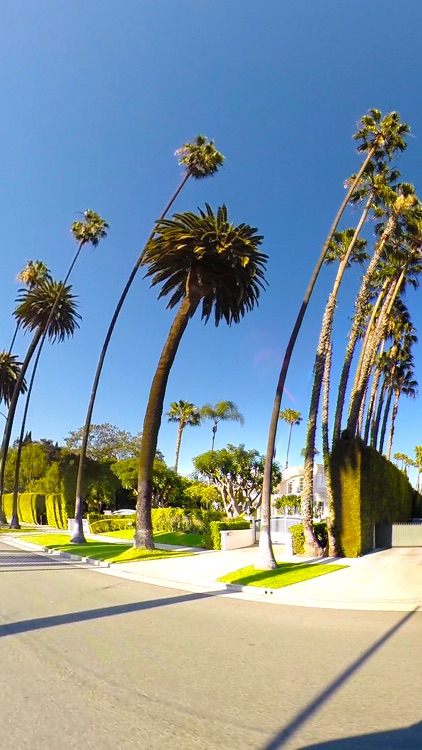 VR Beverly Hills Drive A Virtual Reality Trip 360